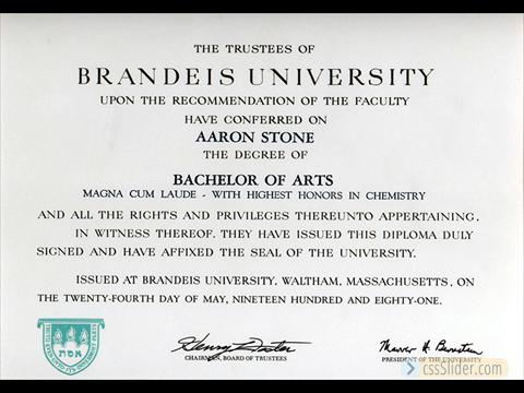 Brandeis University BA